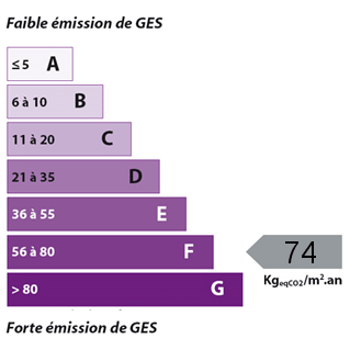 GES Local professionnel Feurs